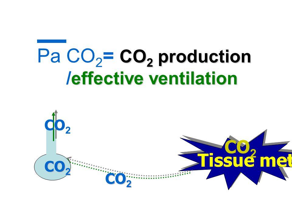 CO 2 production effective ventilation Pa CO 2 = CO 2 production /effective ventilation Tissue metabolism CO 2