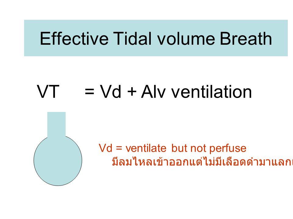 Effective Tidal volume Breath VT = Vd + Alv ventilation Vd = ventilate but not perfuse มีลมไหลเข้าออกแต่ไม่มีเลือดดำมาแลกเปลี่ยน