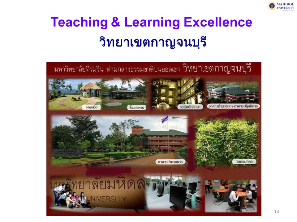 Teaching & Learning Excellence วิทยาเขตกาญจนบุรี 14