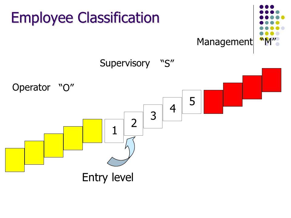 "1 2 3 4 5 Management Supervisory Operator ""M"" ""S"" ""O"" Employee Classification Entry level"