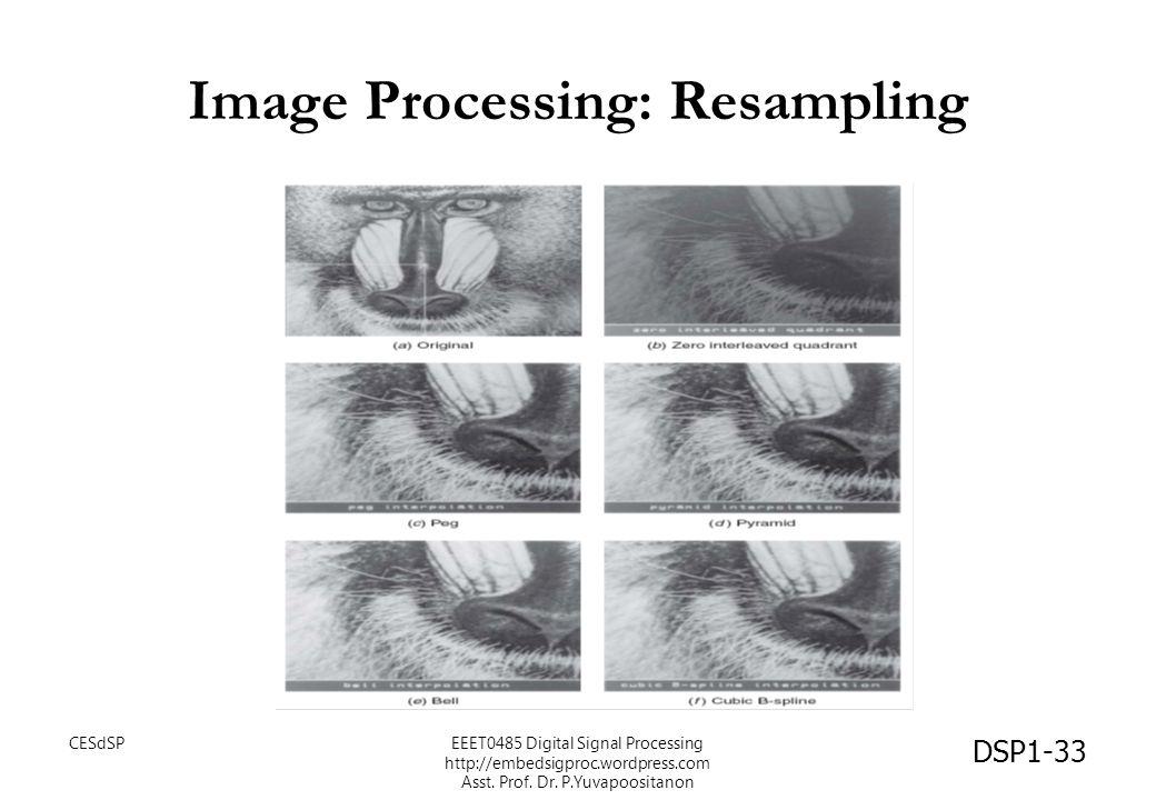 Image Processing: Resampling DSP1-33 CESdSPEEET0485 Digital Signal Processing http://embedsigproc.wordpress.com Asst. Prof. Dr. P.Yuvapoositanon