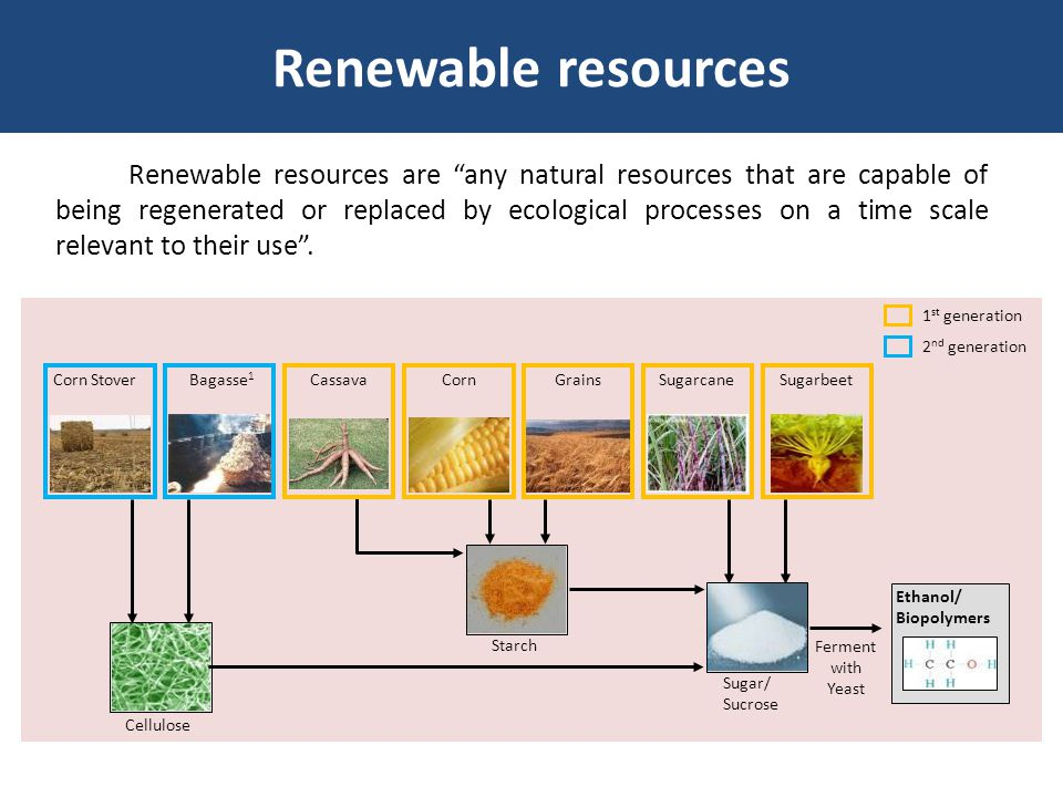 """Renewable resources are """"any natural resources that are capable of being regenerated or replaced by ecological processes on a time scale relevant to t"""