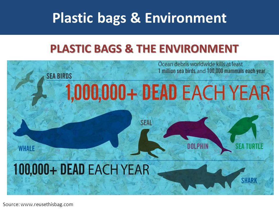 Plastic bags & Environment Source: www.reusethisbag.com PLASTIC BAGS & THE ENVIRONMENT