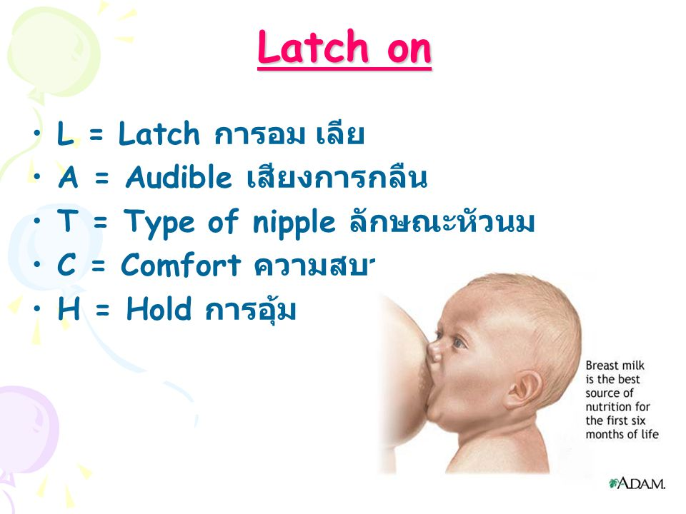 Latch on L = Latch การอม เลีย A = Audible เสียงการกลืน T = Type of nipple ลักษณะหัวนม C = Comfort ความสบาย H = Hold การอุ้ม