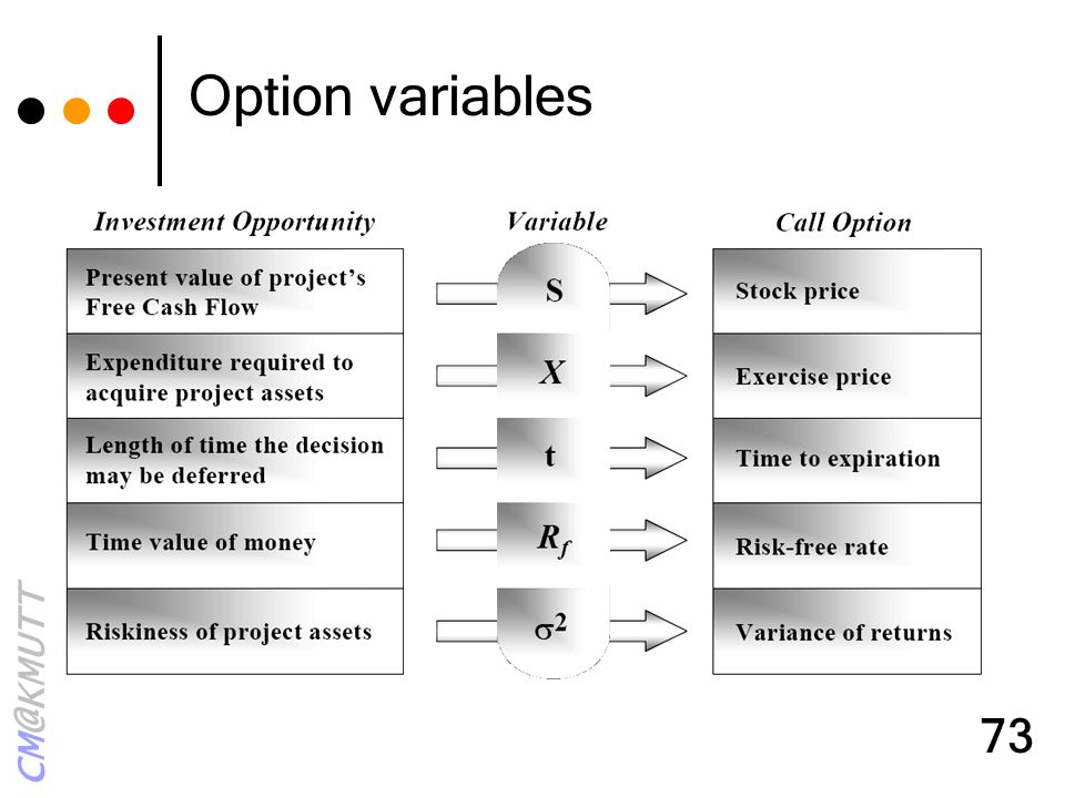 CM@KMUTT 73 Option variables