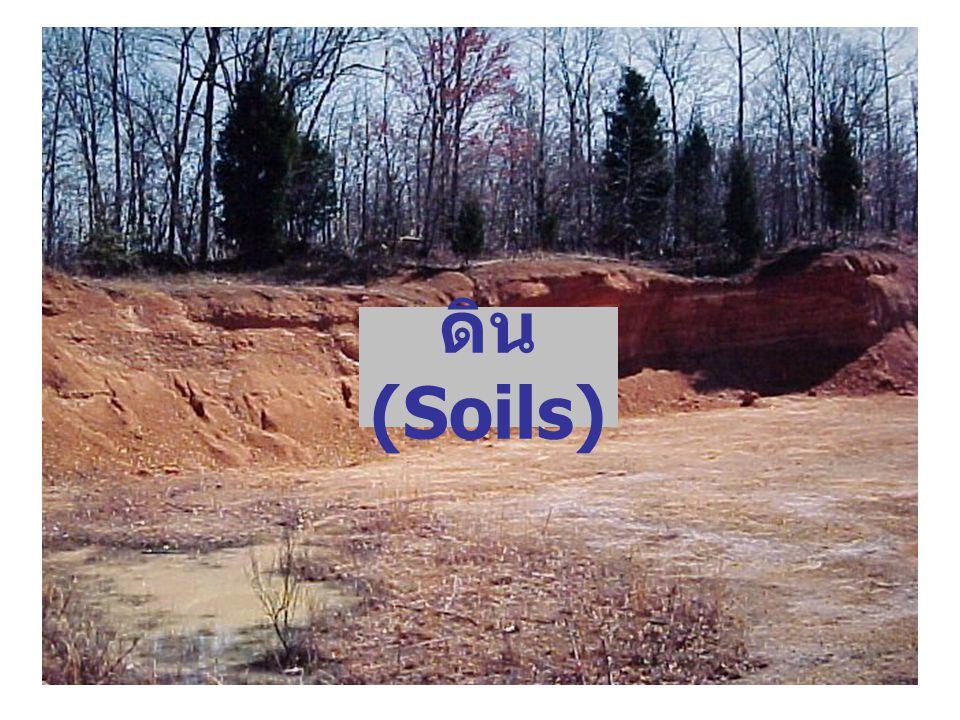 12 Soil formation: การเกิดดิน http://www.seafriends.org.nz/enviro/soil/geosoil.htm#soil เกิดจากการผุพังสลายตัวแบบต่างๆของหินต้นกำเนิดผ่าน กระบวนการพัดพาแล้วตกตะกอนทับถม