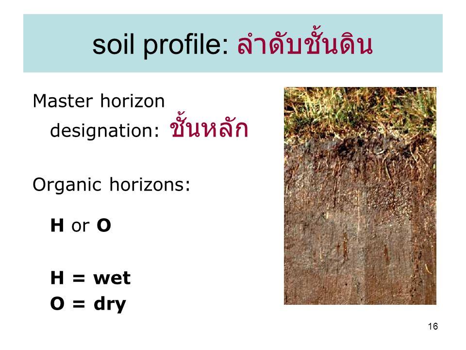 16 soil profile: ลำดับชั้นดิน Master horizon designation: ชั้นหลัก Organic horizons: H or O H = wet O = dry