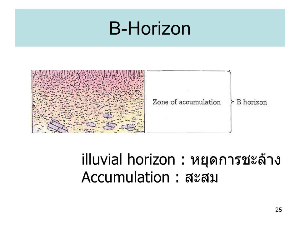 25 B-Horizon illuvial horizon : หยุดการชะล้าง Accumulation : สะสม
