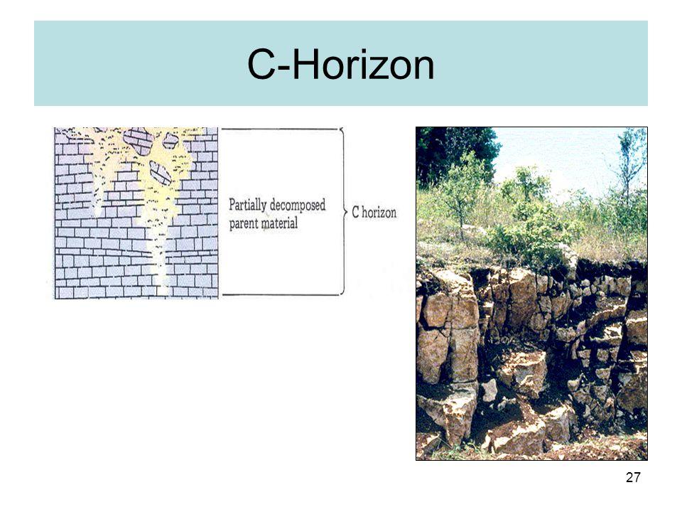 27 C-Horizon