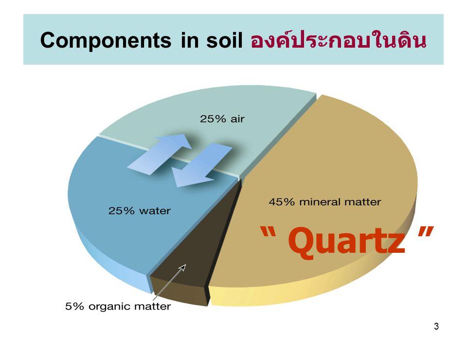 4 soil constituents: ส่วนประกอบ ดิน ทราย ทรายแป้ง และดินเคลย์ อินทรีย์สารชนิดต่าง ๆ ที่ได้จาก กระบวนการเน่าเปื่อย จุลชีพ ขุยอินทรีย์ (humus)