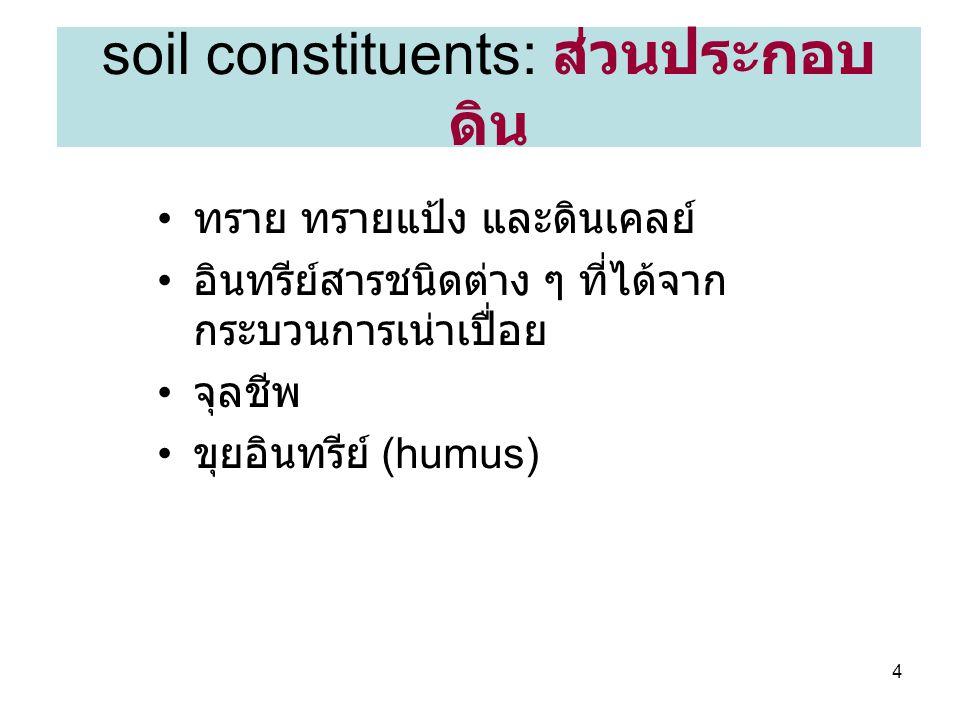 45 Prismatic soil structure