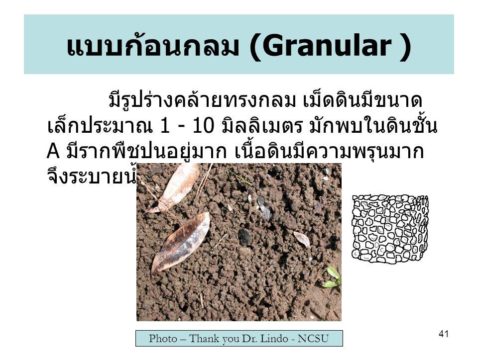 41 แบบก้อนกลม (Granular ) มีรูปร่างคล้ายทรงกลม เม็ดดินมีขนาด เล็กประมาณ 1 - 10 มิลลิเมตร มักพบในดินชั้น A มีรากพืชปนอยู่มาก เนื้อดินมีความพรุนมาก จึงระบายน้ำและอากาศได้ดี Photo – Thank you Dr.