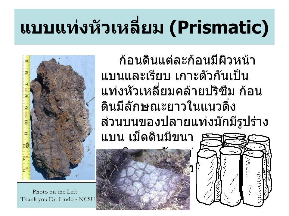 44 แบบแท่งหัวเหลี่ยม (Prismatic) ก้อนดินแต่ละก้อนมีผิวหน้า แบนและเรียบ เกาะตัวกันเป็น แท่งหัวเหลี่ยมคล้ายปริซึม ก้อน ดินมีลักษณะยาวในแนวดิ่ง ส่วนบนของปลายแท่งมักมีรูปร่าง แบน เม็ดดินมีขนาด 1 - 10 เซนติเมตร มักพบในดินชั้น B น้ำ และอากาศซึมได้ปานกลาง Photo on the Left – Thank you Dr.