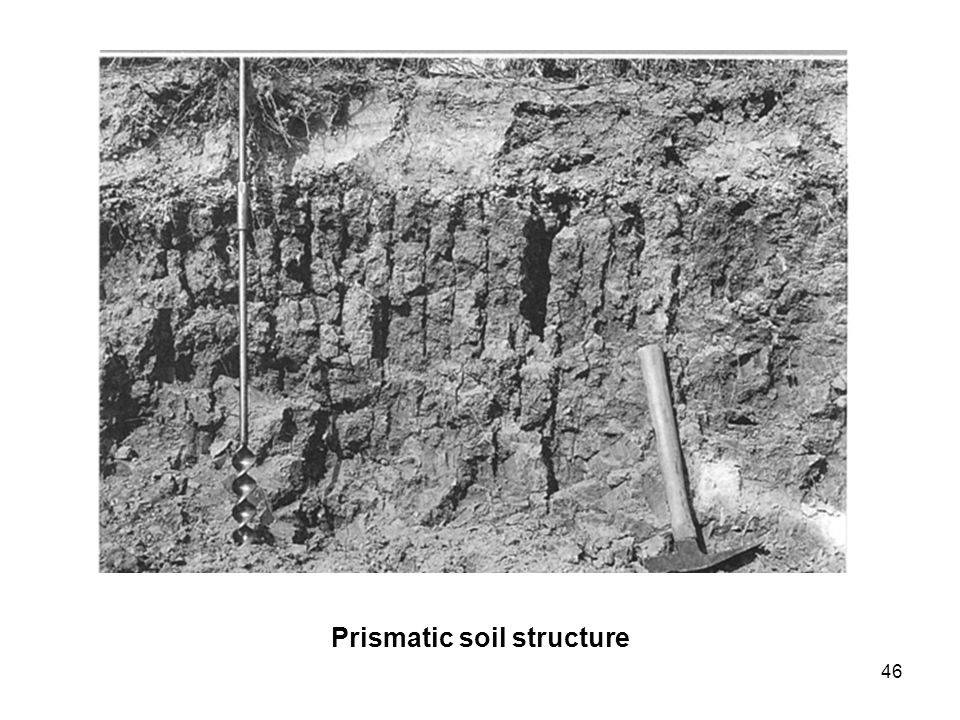 46 Prismatic soil structure