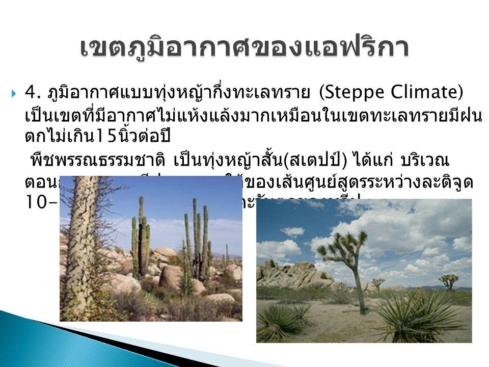  4. ภูมิอากาศแบบทุ่งหญ้ากึ่งทะเลทราย (Steppe Climate) เป็นเขตที่มีอากาศไม่แห้งแล้งมากเหมือนในเขตทะเลทรายมีฝน ตกไม่เกิน 15 นิ้วต่อปี พืชพรรณธรรมชาติ เ