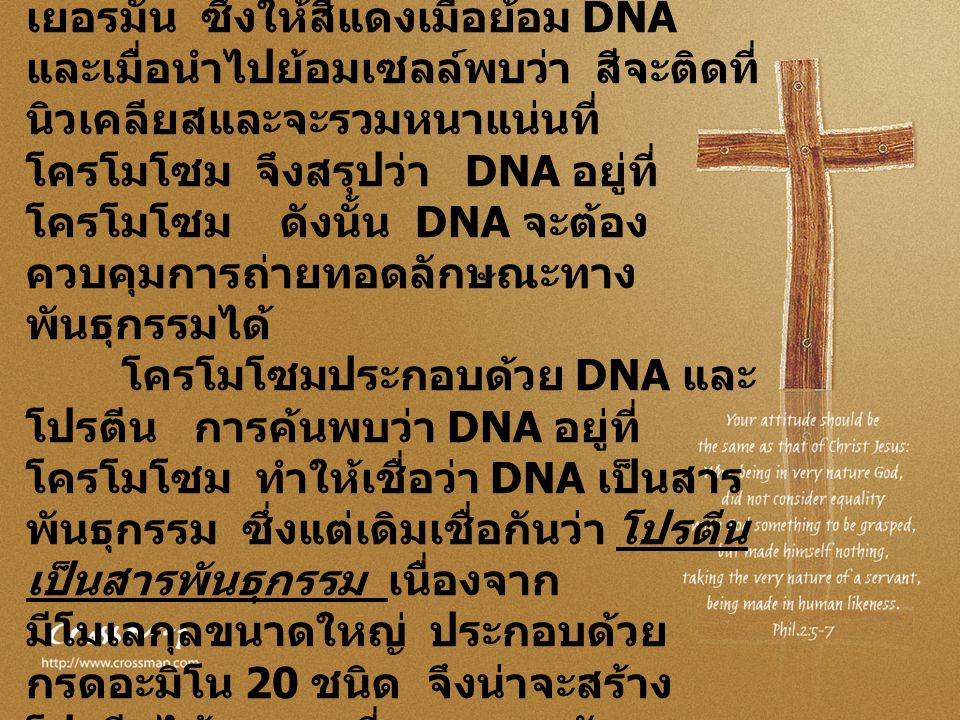 ในปี พ. ศ. 2547 มีการพัฒนาสีฟุค ซิน ( fucsin ) โดยโรเบิร์ต ฟอยล์เกน ( Robert Feulgen ) นักเคมีชาว เยอรมัน ซึ่งให้สีแดงเมื่อย้อม DNA และเมื่อนำไปย้อมเซ