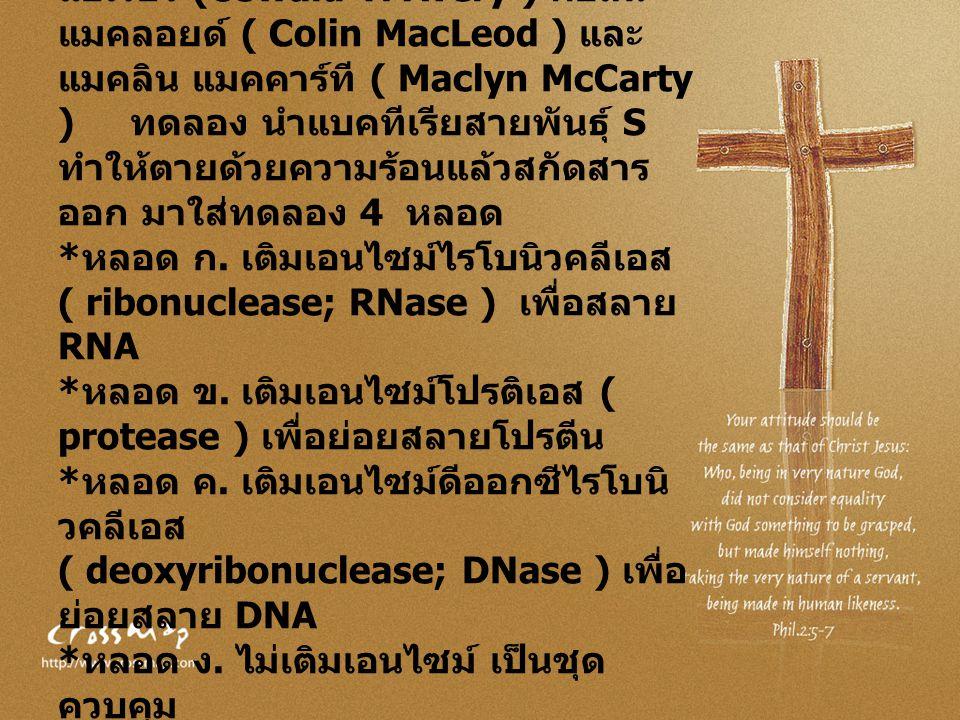 ในปี พ. ศ. 2487 ออสวอลด์ ที แอเวอรี (Oswald T. Avery ) คอลิน แมคลอยด์ ( Colin MacLeod ) และ แมคลิน แมคคาร์ที ( Maclyn McCarty ) ทดลอง นำแบคทีเรียสายพั