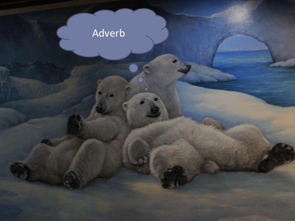 Adverb คือ คำกริยาวิเศษณ์ ทำหน้าที่ขยาย คำกริยา, คำคุณศัพท์, และคำกริยาวิเศษณ์ตัว อื่นๆ โดยมีลักษณะต่างๆดังนี้ Mandy is a careful girl.