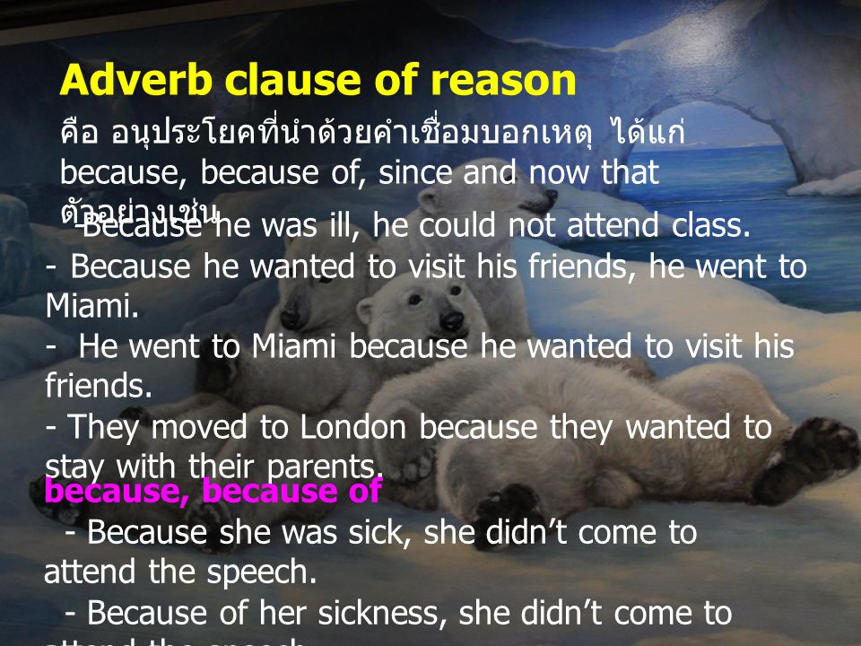 since = because - Since it is rare, it is very expensive.