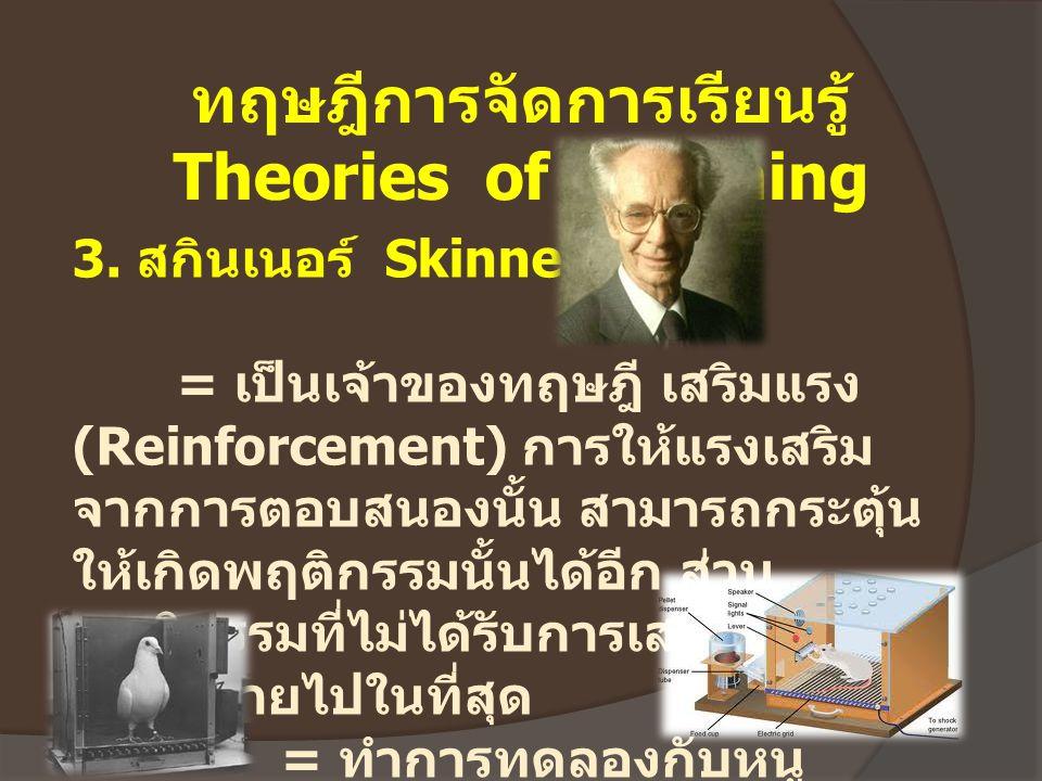 ทฤษฎีการจัดการเรียนรู้ Theories of Learning 3. สกินเนอร์ Skinner = เป็นเจ้าของทฤษฎี เสริมแรง (Reinforcement) การให้แรงเสริม จากการตอบสนองนั้น สามารถกร