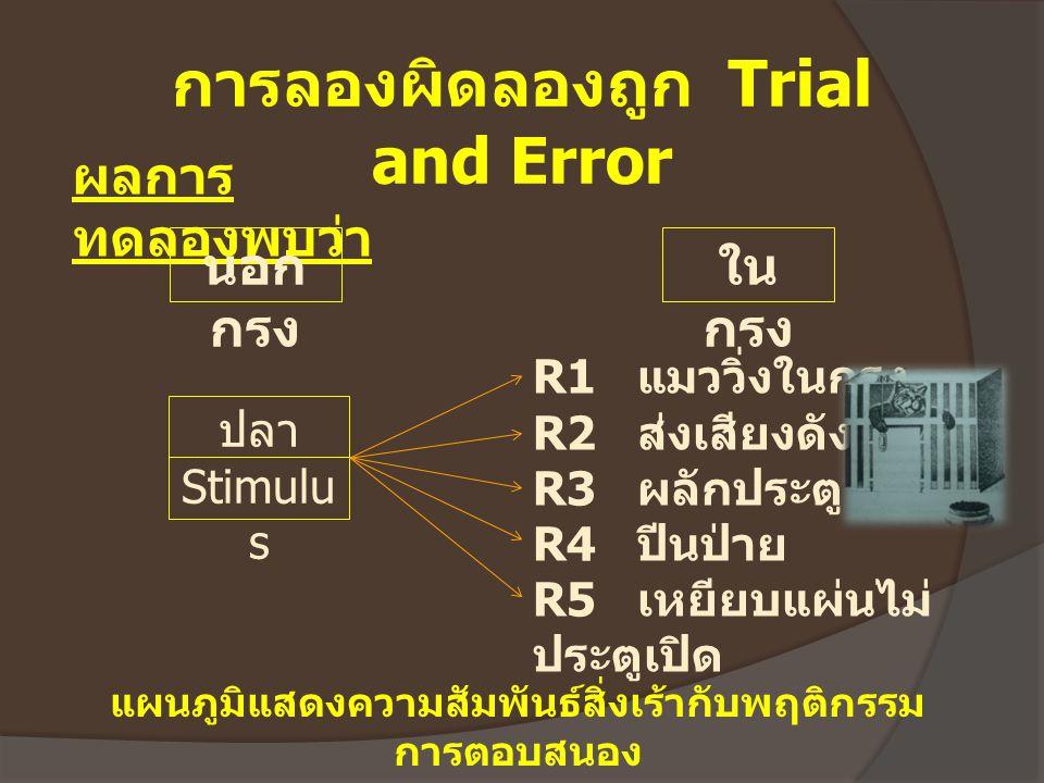 การลองผิดลองถูก Trial and Error ผลการ ทดลองพบว่า นอก กรง ใน กรง R1 แมววิ่งในกรง R2 ส่งเสียงดัง R3 ผลักประตู R4 ปีนป่าย R5 เหยียบแผ่นไม่ ประตูเปิด ปลา