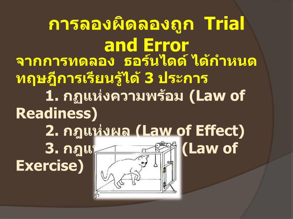 จากการทดลอง ธอร์นไดด์ ได้กำหนด ทฤษฎีการเรียนรู้ได้ 3 ประการ 1. กฏแห่งความพร้อม (Law of Readiness) 2. กฎแห่งผล (Law of Effect) 3. กฎแห่งการฝึกหัด (Law
