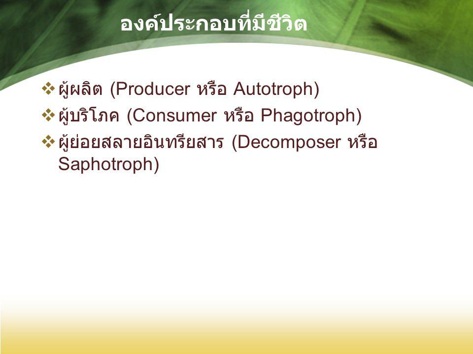 องค์ประกอบที่มีชีวิต  ผู้ผลิต (Producer หรือ Autotroph)  ผู้บริโภค (Consumer หรือ Phagotroph)  ผู้ย่อยสลายอินทรียสาร (Decomposer หรือ Saphotroph)