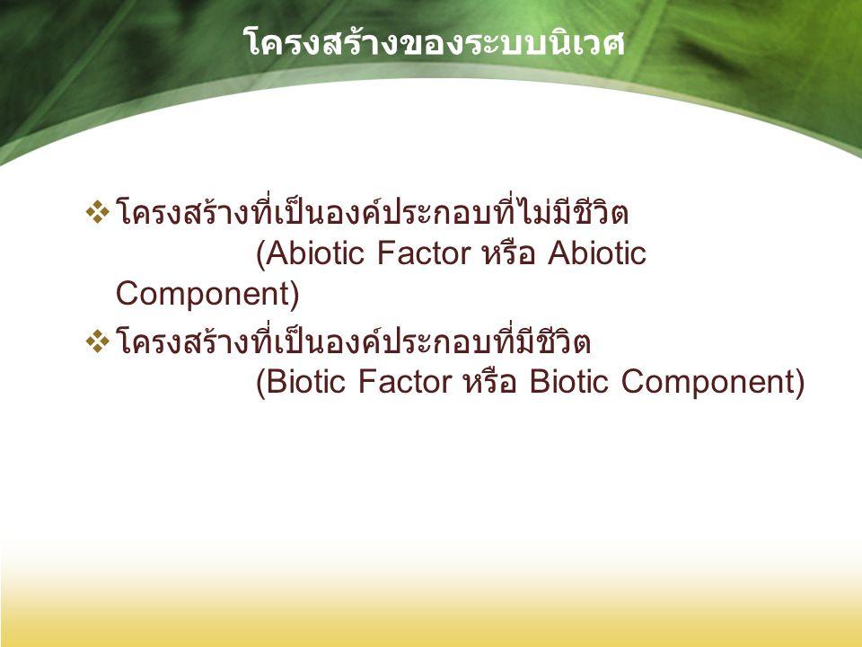 โครงสร้างของระบบนิเวศ  โครงสร้างที่เป็นองค์ประกอบที่ไม่มีชีวิต (Abiotic Factor หรือ Abiotic Component)  โครงสร้างที่เป็นองค์ประกอบที่มีชีวิต (Biotic Factor หรือ Biotic Component)