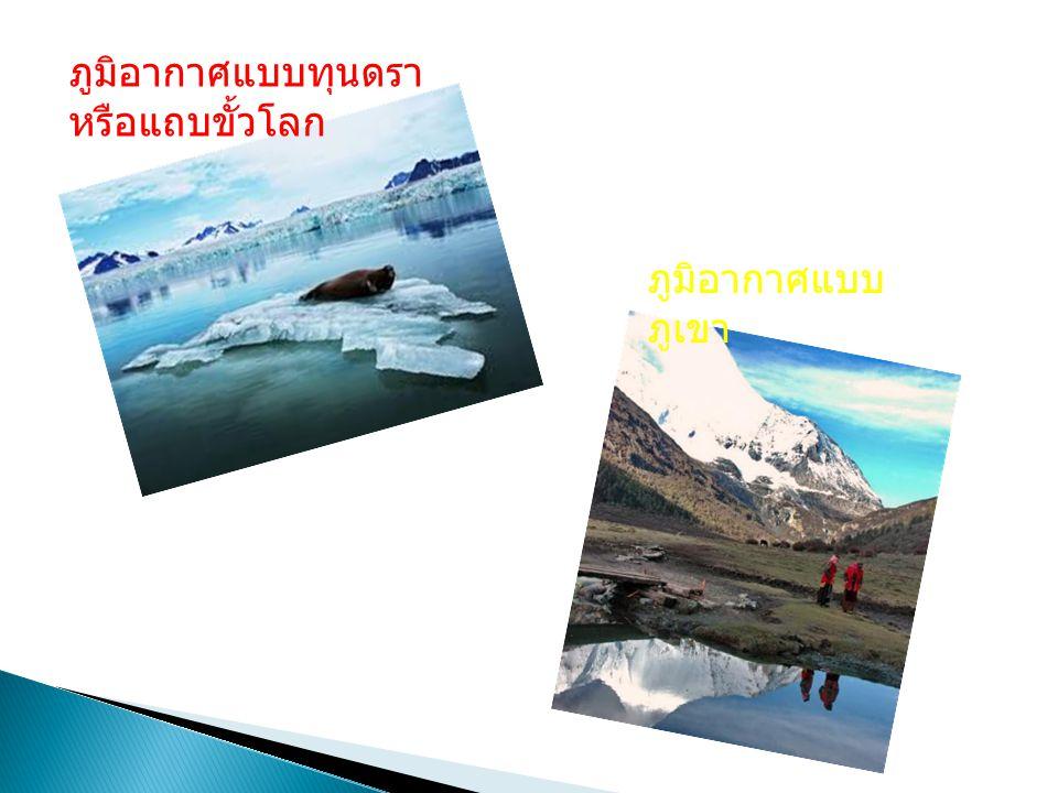 ภูมิอากาศแบบทุนดรา หรือแถบขั้วโลก ภูมิอากาศแบบ ภูเขา
