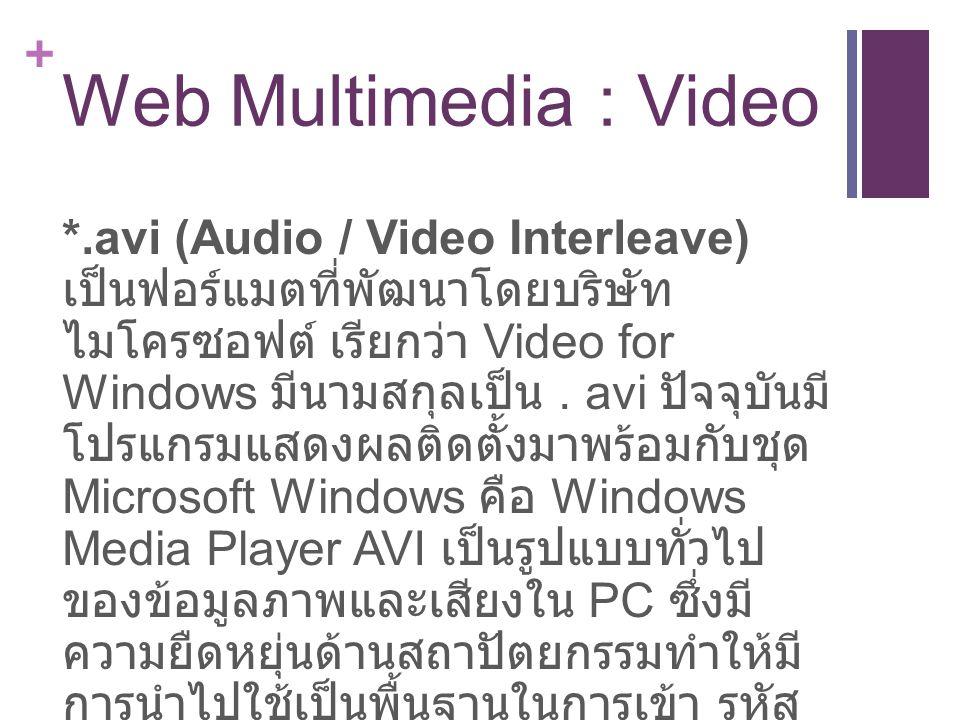 + Web Multimedia : Video *.avi (Audio / Video Interleave) เป็นฟอร์แมตที่พัฒนาโดยบริษัท ไมโครซอฟต์ เรียกว่า Video for Windows มีนามสกุลเป็น.