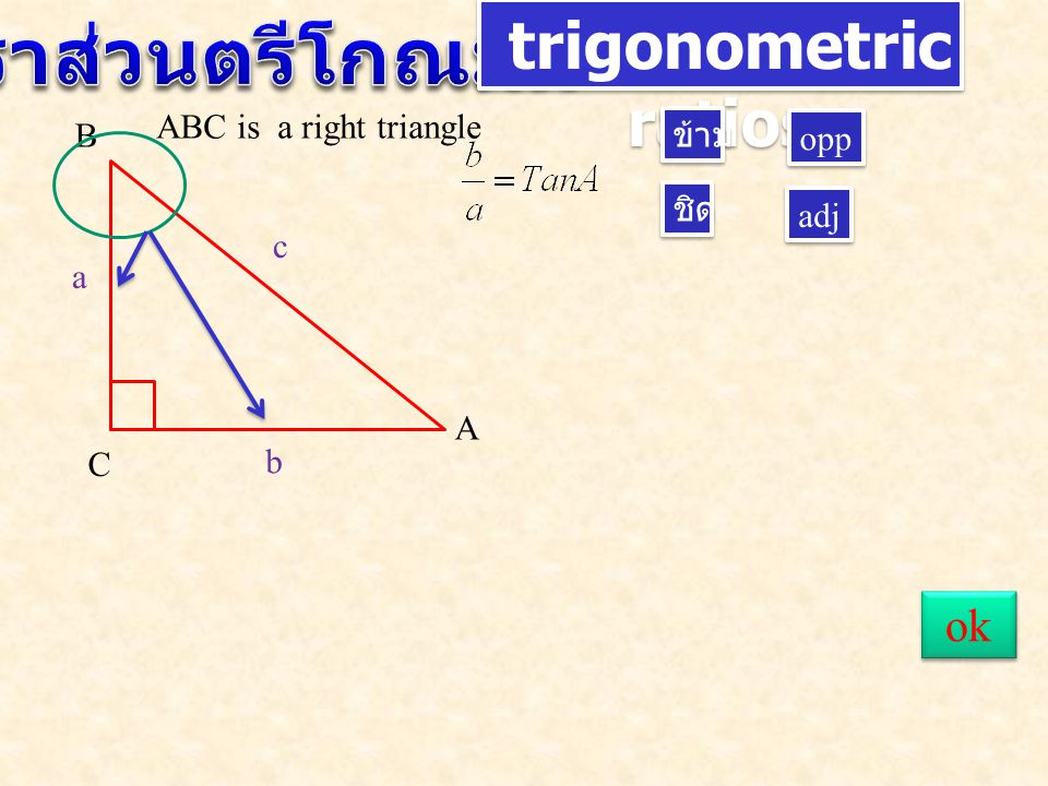trigonometric ratios A B C c a b ชิด ข้าม adj opp ABC is a right triangle ok