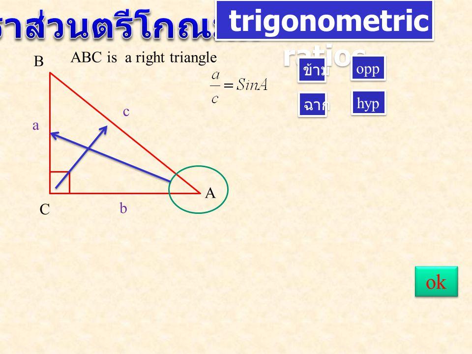 trigonometric ratios A B C c a b ข้าม ฉาก opp hyp ABC is a right triangle ok