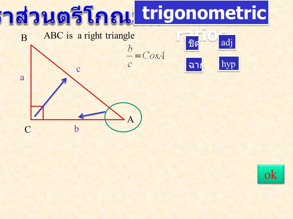 trigonometric ratios A B C c a b ชิด ฉาก adj hyp ABC is a right triangle ok