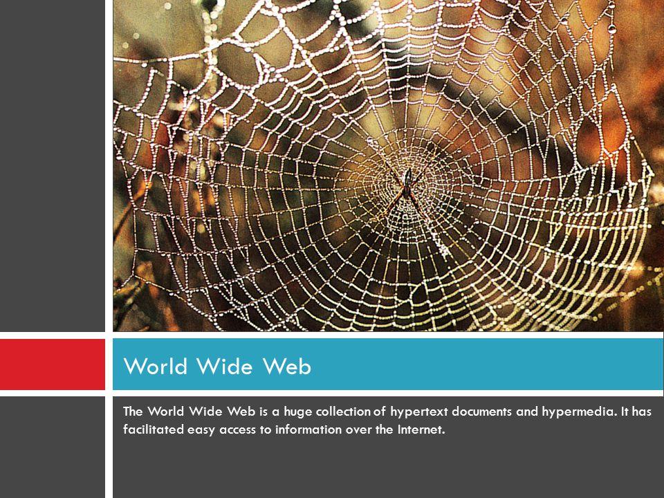  Web Hosting คืออะไร .
