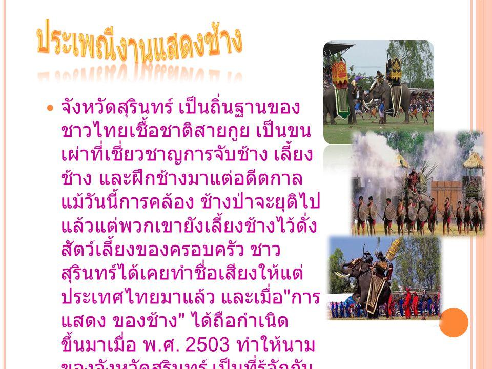 จังหวัดสุรินทร์ เป็นถิ่นฐานของ ชาวไทยเชื้อชาติสายกูย เป็นขน เผ่าที่เชี่ยวชาญการจับช้าง เลี้ยง ช้าง และฝึกช้างมาแต่อดีตกาล แม้วันนี้การคล้อง ช้างป่าจะย
