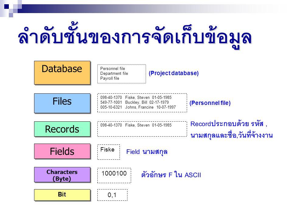 ชนิดของฐานข้อมูล : สถานที่ตั้งของฐานข้อมูล ฐานข้อมูลแบบรวมศูนย์ (Centralized Database System) Client Server