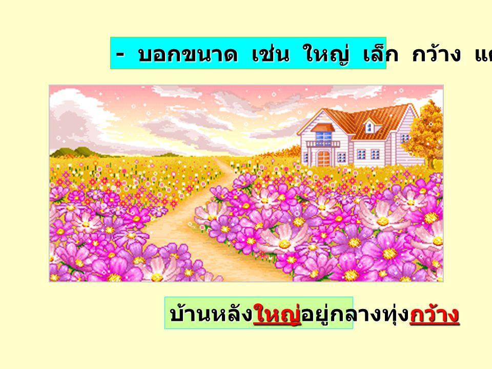 - บอกกลิ่น เช่น หอม หืน เหม็น ฉุน ดอกกุหลาบมีสีสวย และกลิ่นหอม