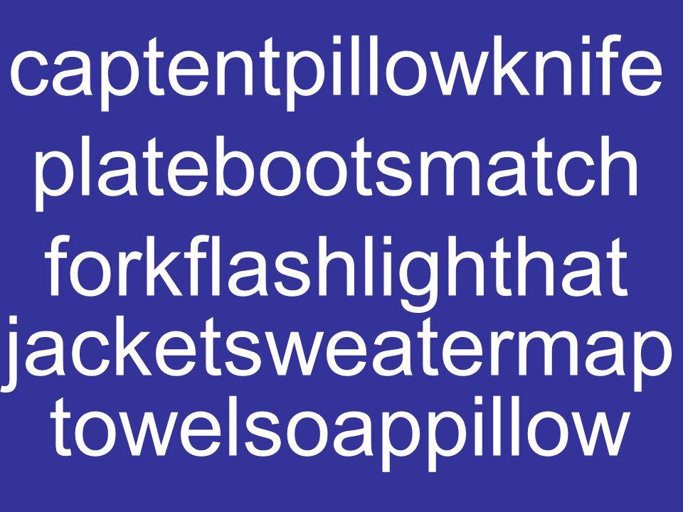 captentpillowknife platebootsmatch forkflashlighthat jacketsweatermap towelsoappillow oupsaladspaghetti steakpapayawhisky jackfruitpearoseapple