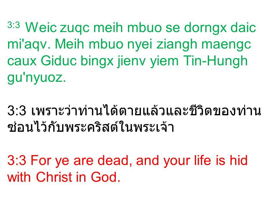 3:3 Weic zuqc meih mbuo se dorngx daic mi'aqv. Meih mbuo nyei ziangh maengc caux Giduc bingx jienv yiem Tin-Hungh gu'nyuoz. 3:3 เพราะว่าท่านได้ตายแล้ว