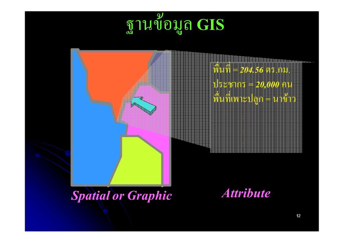 ฐานข้อมูล GIS พื่นที่ = 204.56 ตร. กม. ประชากร = 20,000 คน พื่นที่เพาะปลูก = นาข้าว : : Attribute Spatial or Graphic 12