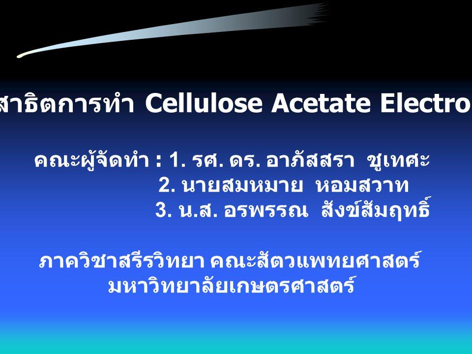 สไลด์การสาธิตการทำ Cellulose Acetate Electrophoresis คณะผู้จัดทำ : 1. รศ. ดร. อาภัสสรา ชูเทศะ 2. นายสมหมาย หอมสวาท 3. น. ส. อรพรรณ สังข์สัมฤทธิ์ ภาควิ