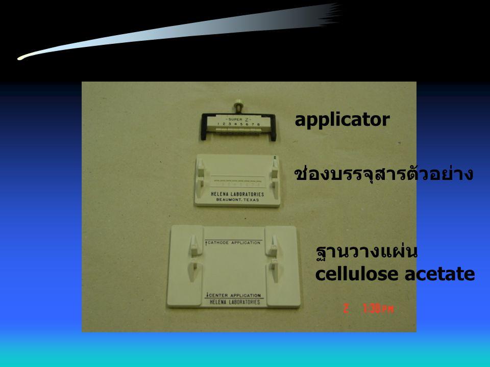 เมื่อครบกำหนดเวลา นำแผ่น cellulose acetate มาซับให้แห้งโดยใช้กระดาษกรอง หยดน้ำกลั่นลงบนฐาน วางแผ่น cellulose acetate ลงบนฐานนี้ โดยให้ด้านที่ตัดมุม อยู่ตรงเส้น center application หรือ cathode application