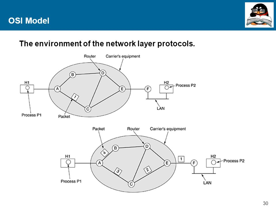 30 Proprietary and Confidential to Accenture OSI Model The environment of the network layer protocols.