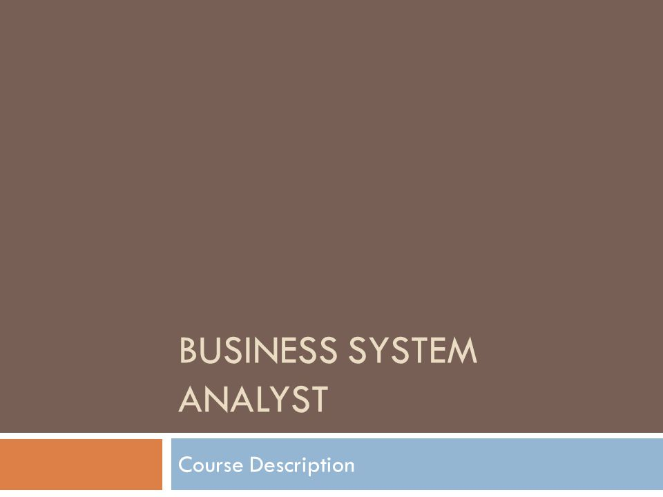 BUSINESS SYSTEM ANALYST Course Description