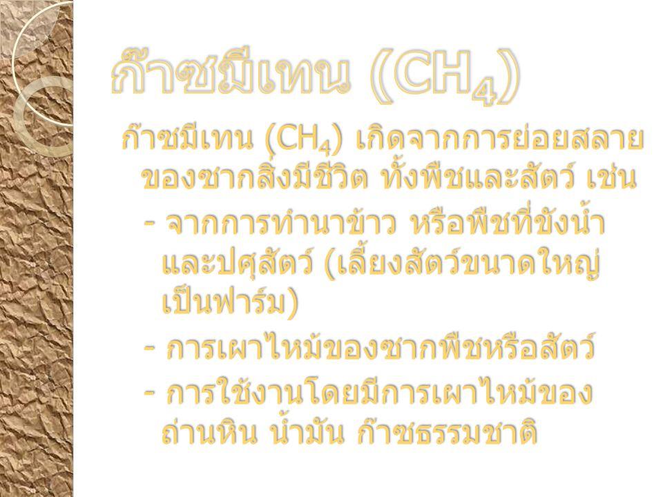 ก๊าซมีเทน (CH 4 ) เกิดจากการย่อยสลาย ของซากสิ่งมีชีวิต ทั้งพืชและสัตว์ เช่น - จากการทำนาข้าว หรือพืชที่ขังน้ำ และปศุสัตว์ ( เลี้ยงสัตว์ขนาดใหญ่ เป็นฟาร์ม ) - การเผาไหม้ของซากพืชหรือสัตว์ - การใช้งานโดยมีการเผาไหม้ของ ถ่านหิน น้ำมัน ก๊าซธรรมชาติ