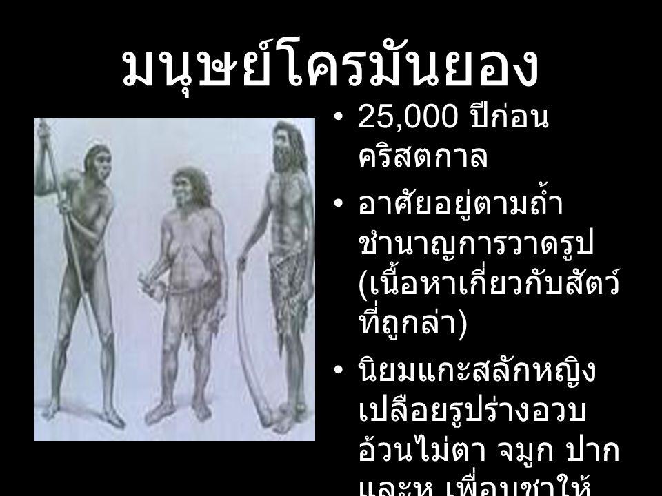 มนุษย์โครมันยอง 25,000 ปีก่อน คริสตกาล อาศัยอยู่ตามถ้ำ ชำนาญการวาดรูป ( เนื้อหาเกี่ยวกับสัตว์ ที่ถูกล่า ) นิยมแกะสลักหญิง เปลือยรูปร่างอวบ อ้วนไม่ตา จ