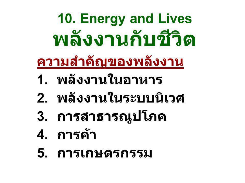 10. Energy and Lives พลังงานกับชีวิต ความสำคัญของพลังงาน 1. พลังงานในอาหาร 2. พลังงานในระบบนิเวศ 3. การสาธารณูปโภค 4. การค้า 5. การเกษตรกรรม