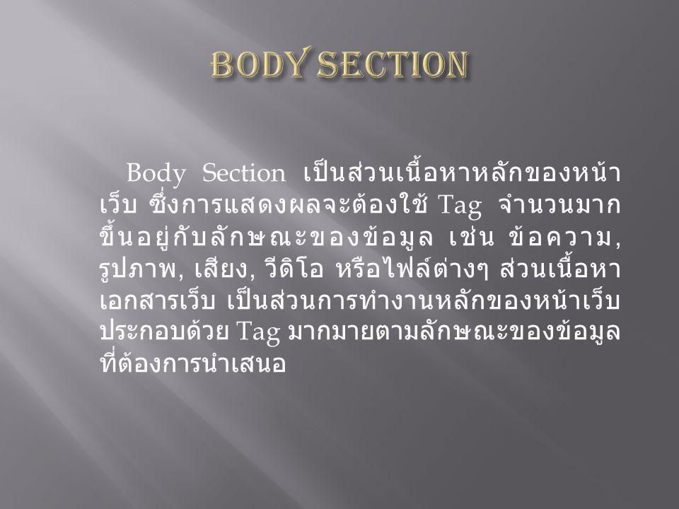 Body Section เป็นส่วนเนื้อหาหลักของหน้า เว็บ ซึ่งการแสดงผลจะต้องใช้ Tag จำนวนมาก ขึ้นอยู่กับลักษณะของข้อมูล เช่น ข้อความ, รูปภาพ, เสียง, วีดิโอ หรือไฟ