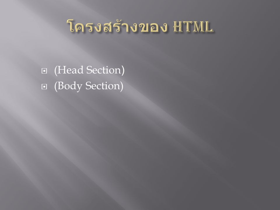  (Head Section)  (Body Section)