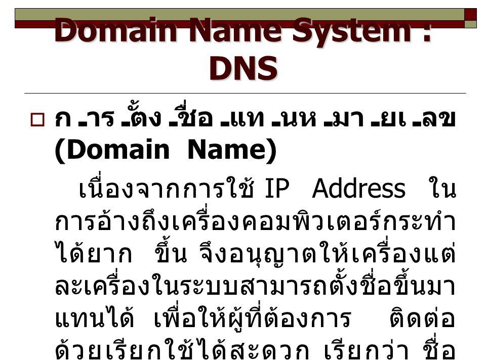 Domain Name System : DNS  การตั้งชื่อแทนหมายเลข (Domain Name) เนื่องจากการใช้ IP Address ใน การอ้างถึงเครื่องคอมพิวเตอร์กระทำ ได้ยาก ขึ้น จึงอนุญาตให